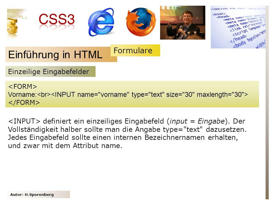 Einführung in HTML Formulare Einzeilige Eingabefelder