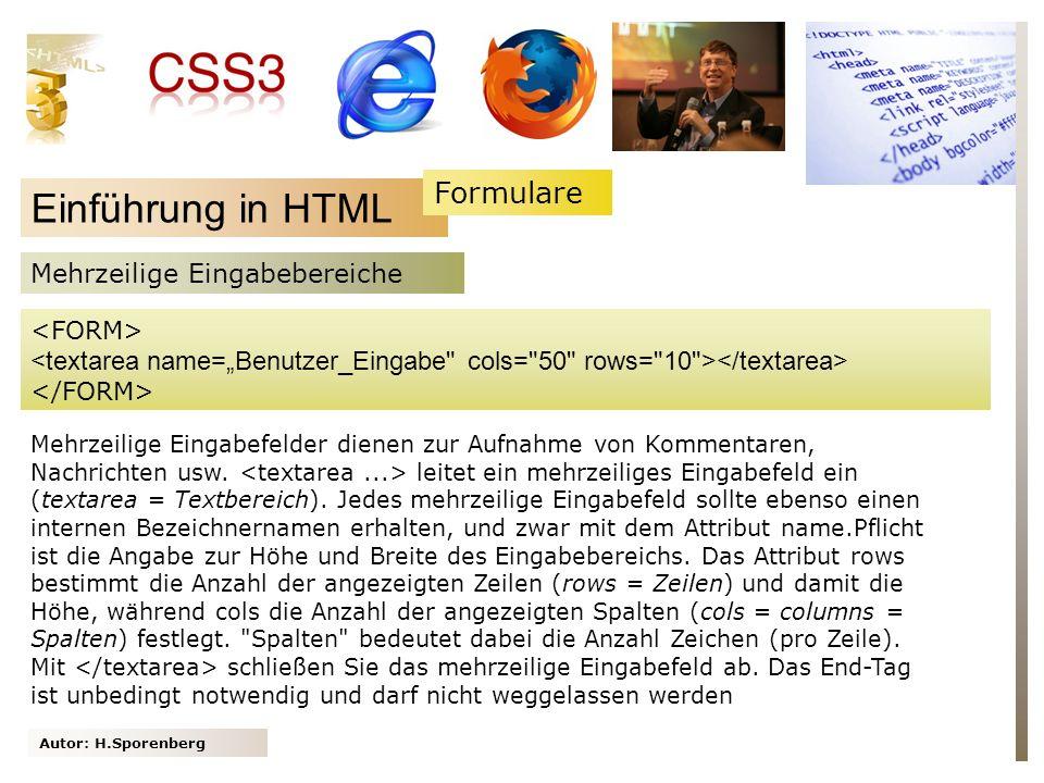 Einführung in HTML Formulare Mehrzeilige Eingabebereiche