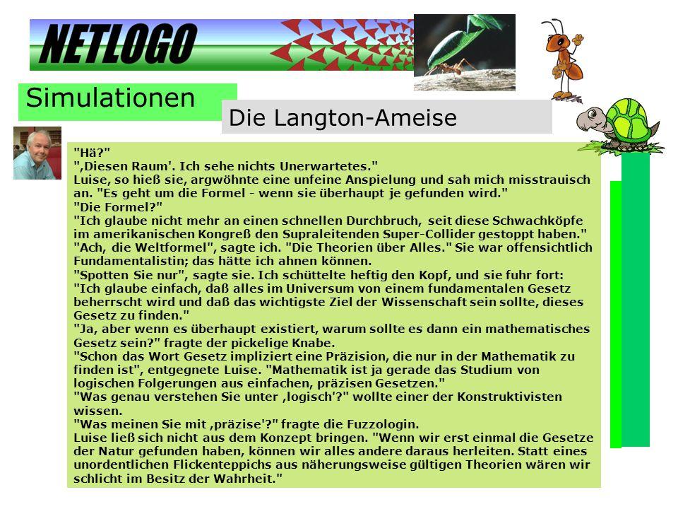 Simulationen Die Langton-Ameise Hä