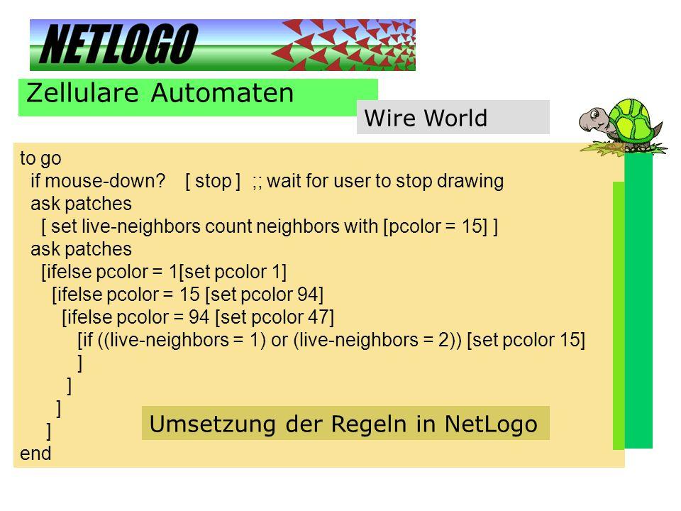 Zellulare Automaten Wire World Umsetzung der Regeln in NetLogo to go