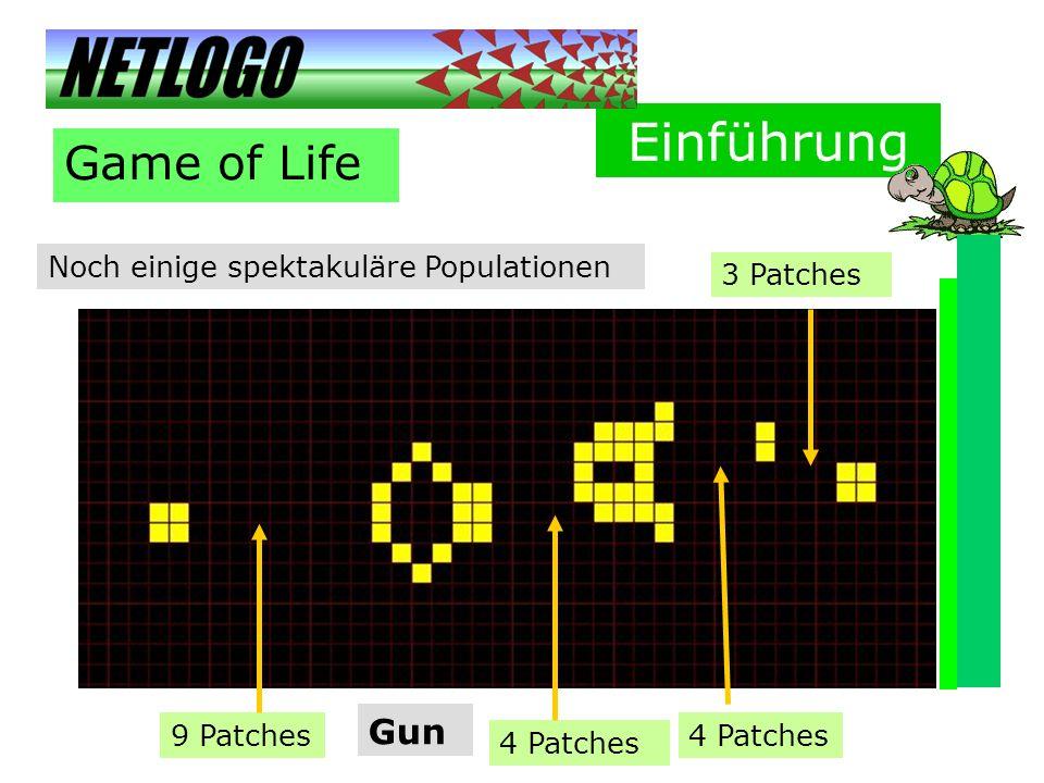 Einführung Game of Life Gun Noch einige spektakuläre Populationen