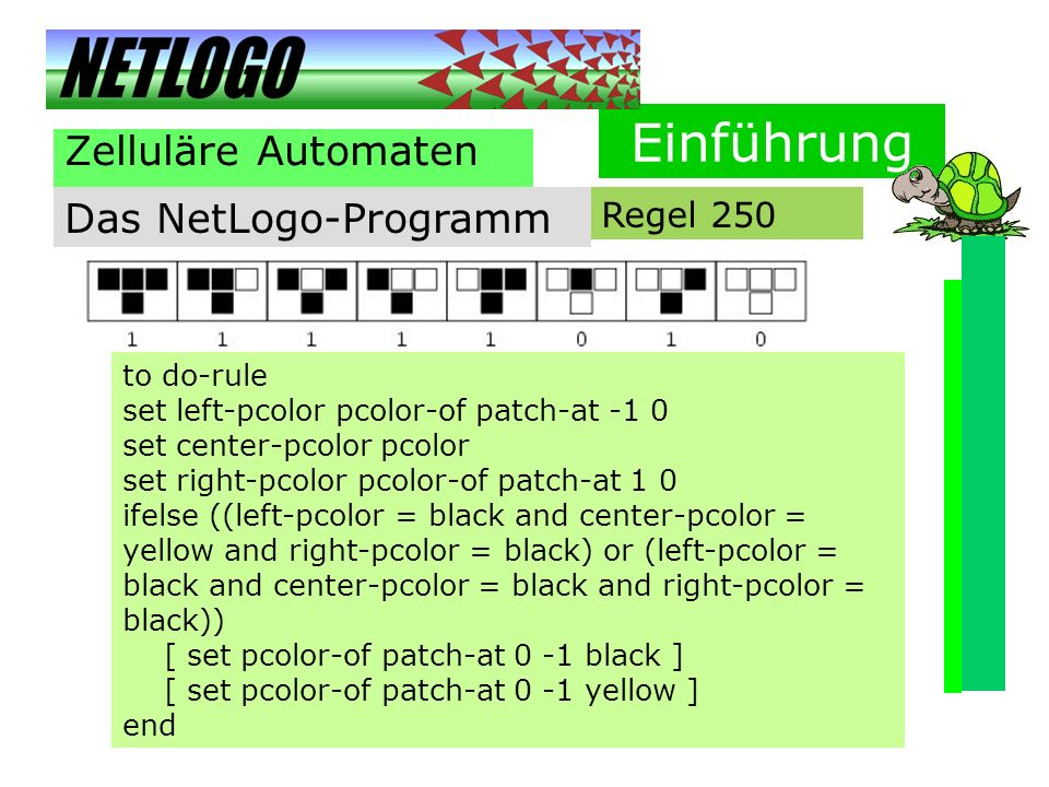 Einführung Zelluläre Automaten Das NetLogo-Programm Regel 250