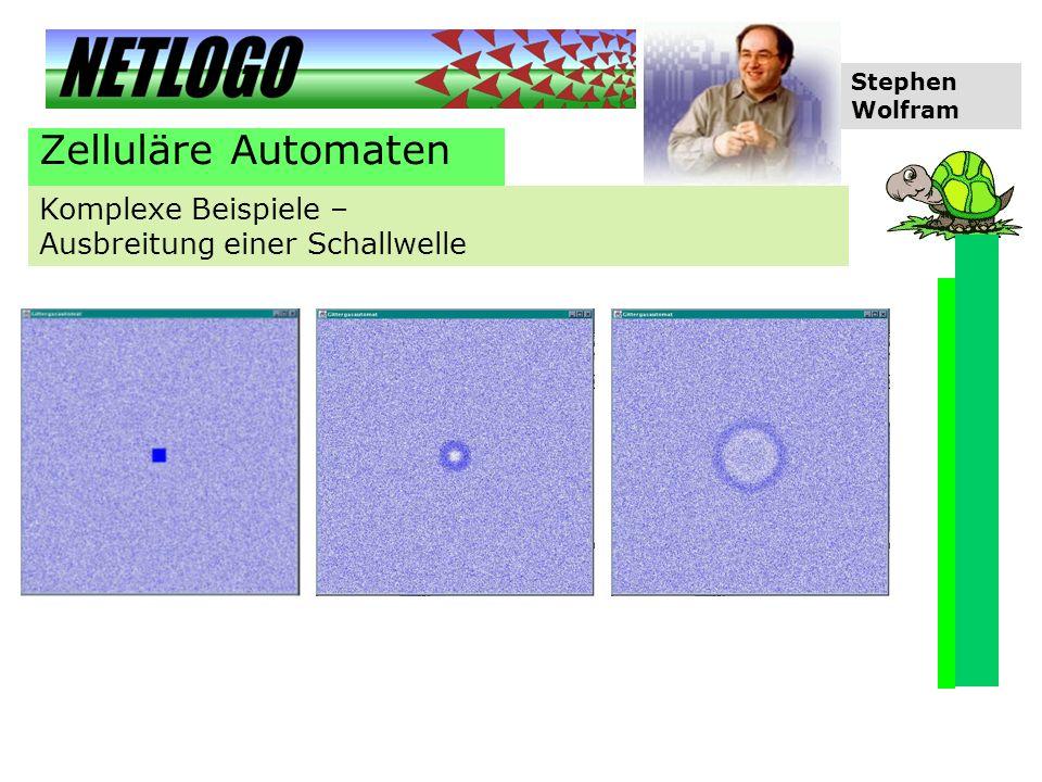 Zelluläre Automaten Komplexe Beispiele – Ausbreitung einer Schallwelle