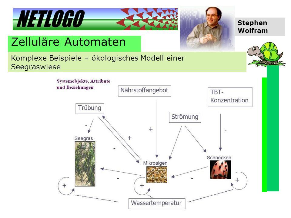 Zelluläre Automaten Komplexe Beispiele – ökologisches Modell einer