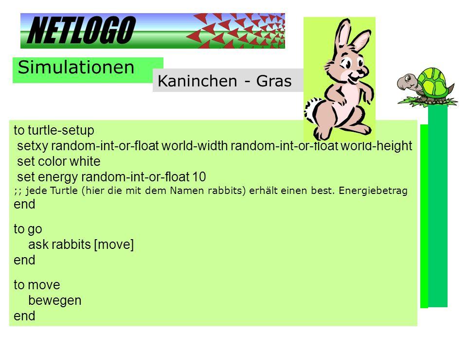 Simulationen Kaninchen - Gras to turtle-setup