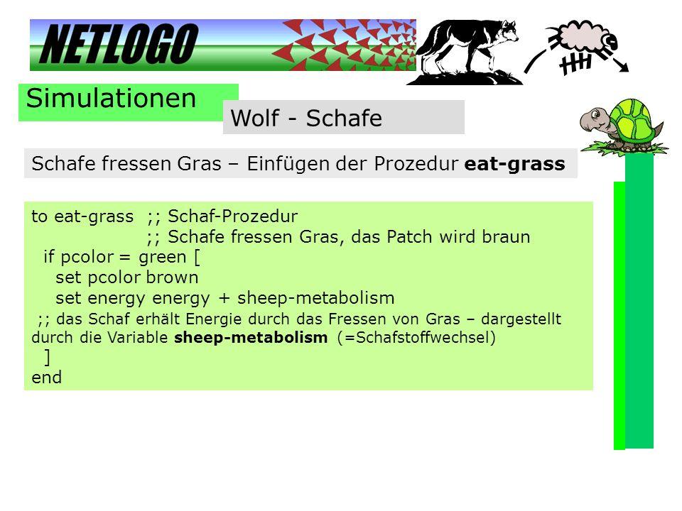 Simulationen Wolf - Schafe