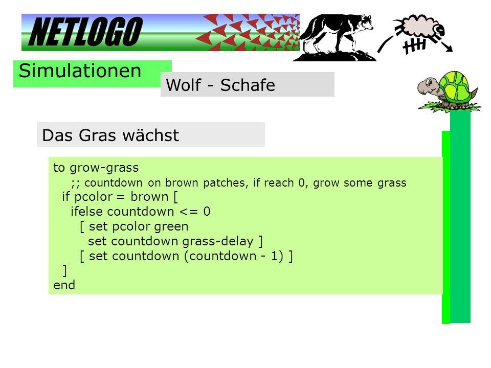 Simulationen Wolf - Schafe Das Gras wächst to grow-grass