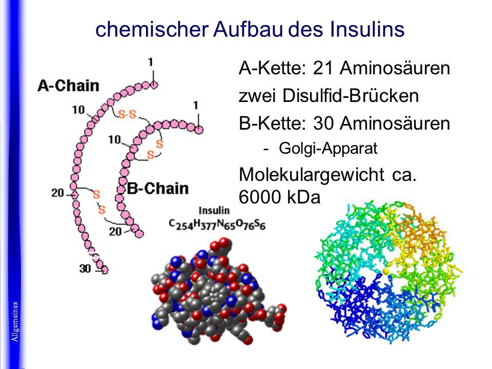 chemischer Aufbau des Insulins