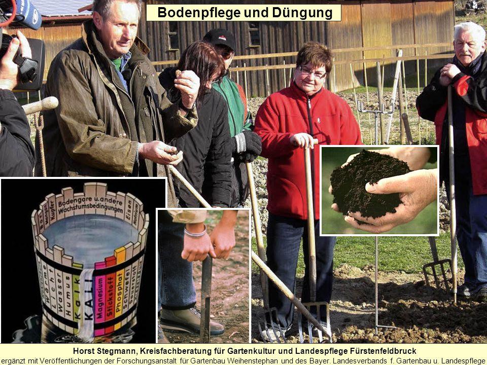 Bodenpflege und Düngung