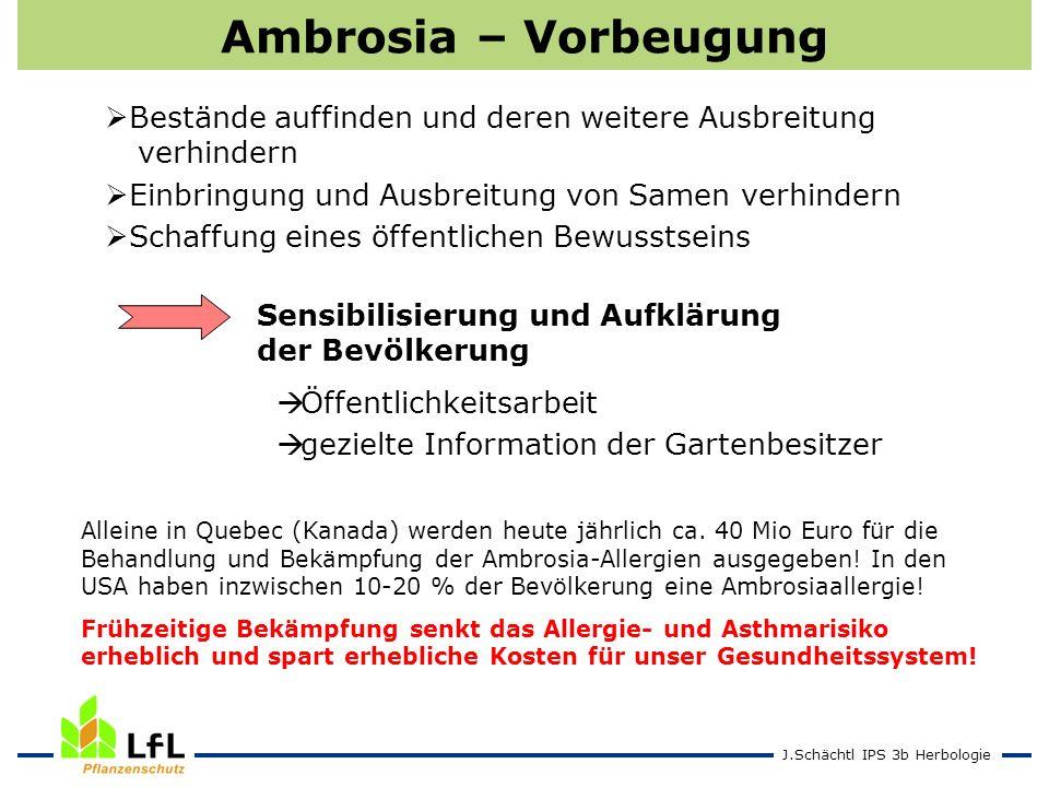 Ambrosia – Vorbeugung Bestände auffinden und deren weitere Ausbreitung verhindern. Einbringung und Ausbreitung von Samen verhindern.