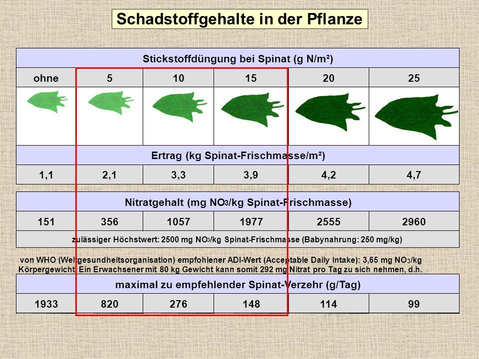 Schadstoffgehalte in der Pflanze