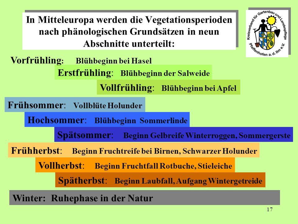 In Mitteleuropa werden die Vegetationsperioden nach phänologischen Grundsätzen in neun Abschnitte unterteilt: