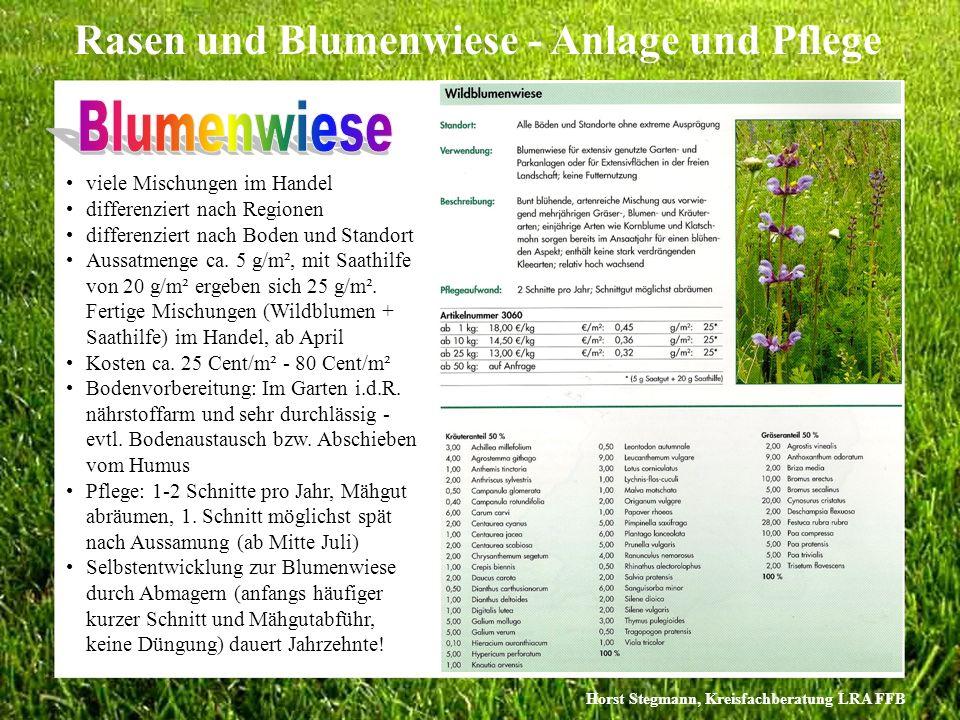 Blumenwiese viele Mischungen im Handel differenziert nach Regionen