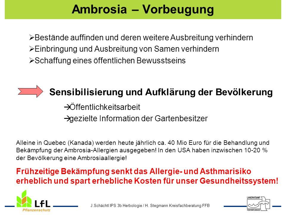 Ambrosia – Vorbeugung Sensibilisierung und Aufklärung der Bevölkerung