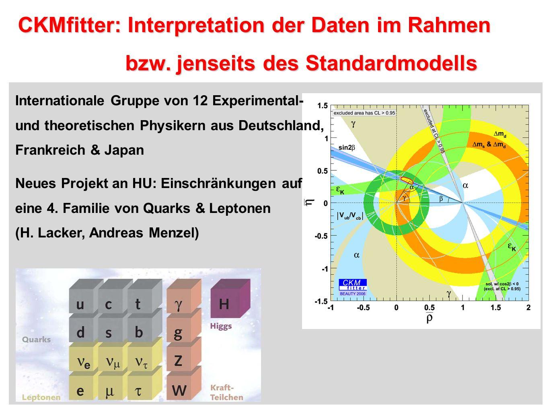CKMfitter: Interpretation der Daten im Rahmen
