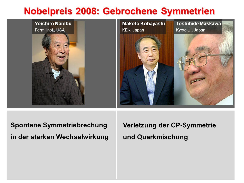 Nobelpreis 2008: Gebrochene Symmetrien