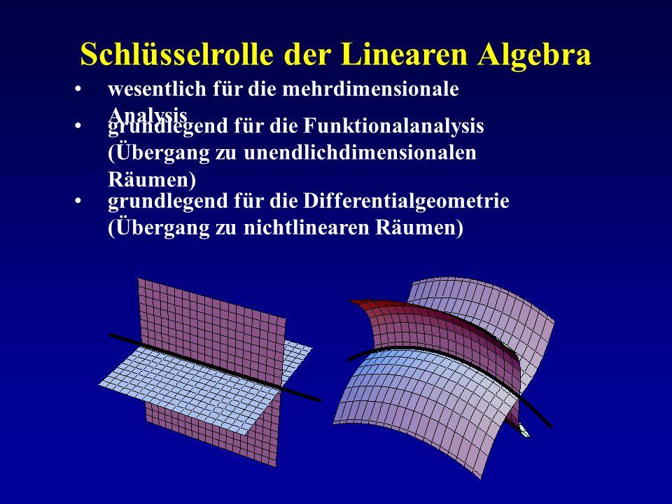 Schlüsselrolle der Linearen Algebra