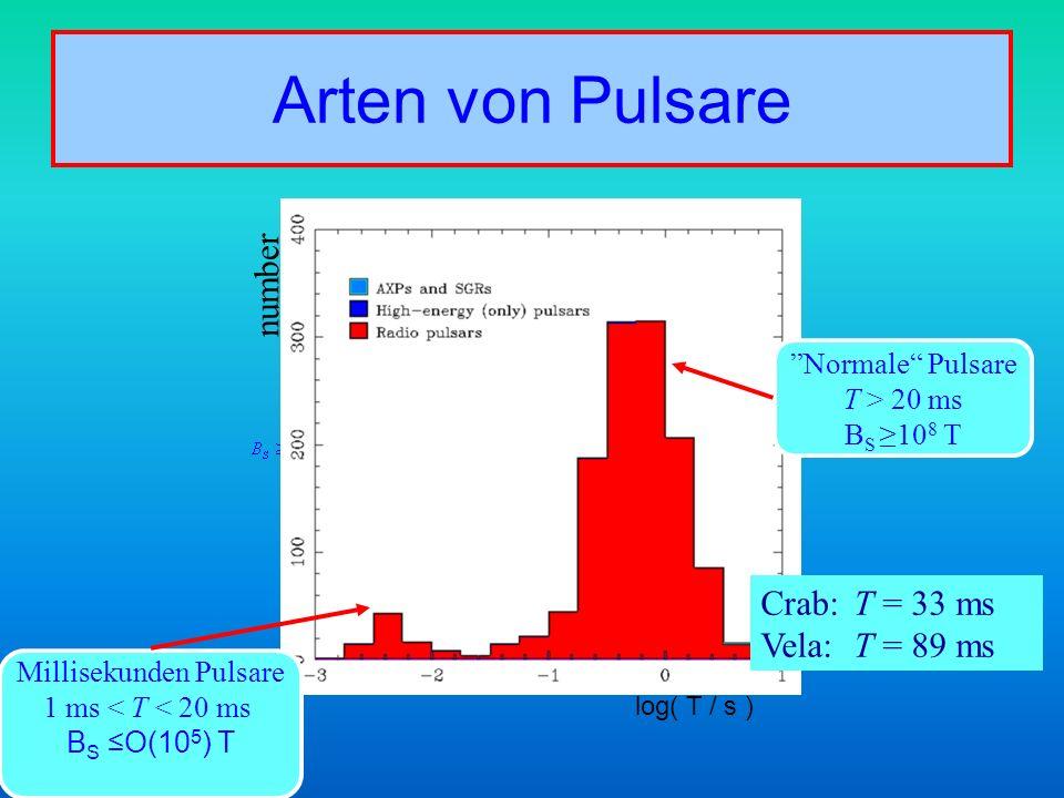 Millisekunden Pulsare