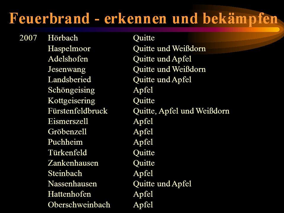 2007 Hörbach Quitte Haspelmoor Quitte und Weißdorn. Adelshofen Quitte und Apfel. Jesenwang Quitte und Weißdorn.
