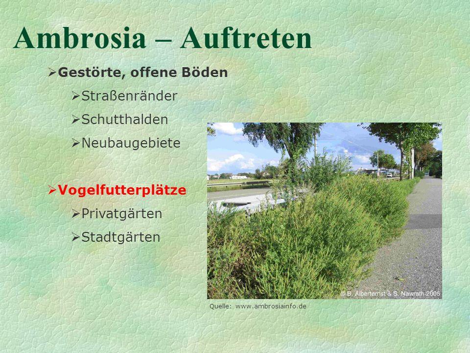 Ambrosia – Auftreten Gestörte, offene Böden Straßenränder Schutthalden