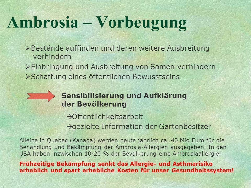 Ambrosia – VorbeugungBestände auffinden und deren weitere Ausbreitung verhindern. Einbringung und Ausbreitung von Samen verhindern.