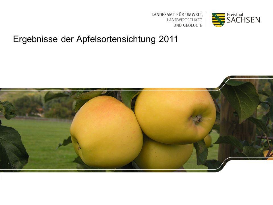 Ergebnisse der Apfelsortensichtung 2011