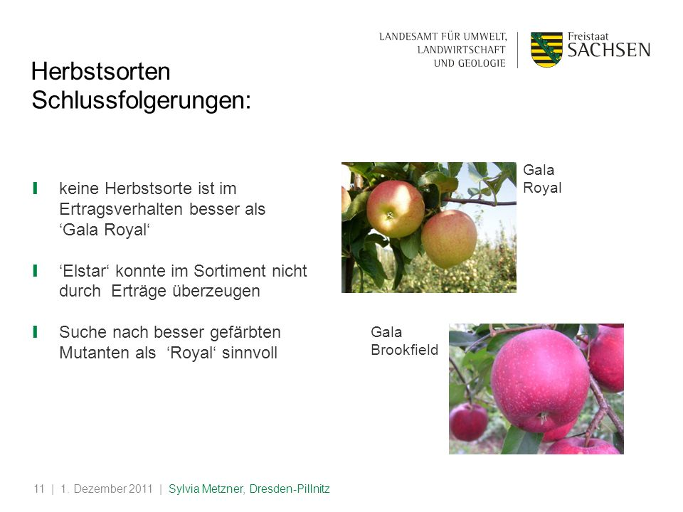 Herbstsorten Schlussfolgerungen: