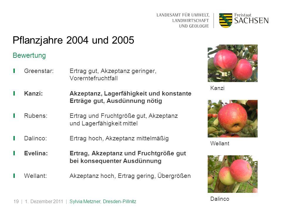 Pflanzjahre 2004 und 2005 Bewertung