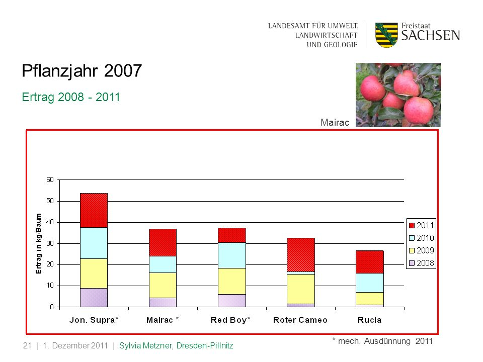 Pflanzjahr 2007 Ertrag 2008 - 2011 Mairac * mech. Ausdünnung 2011 test