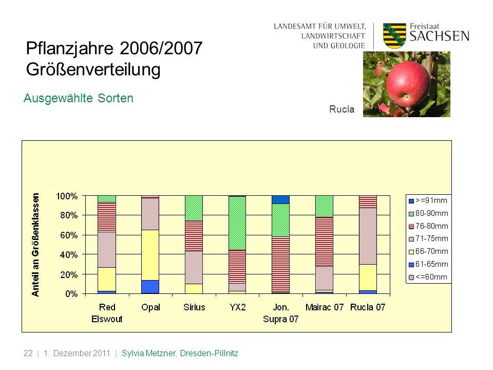 Pflanzjahre 2006/2007 Größenverteilung