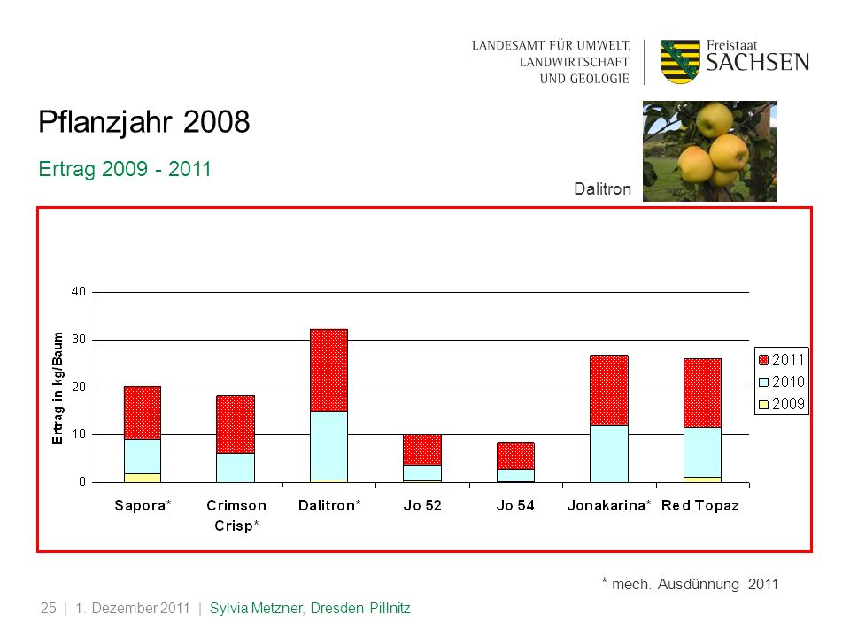 Pflanzjahr 2008 Ertrag 2009 - 2011 Dalitron * mech. Ausdünnung 2011