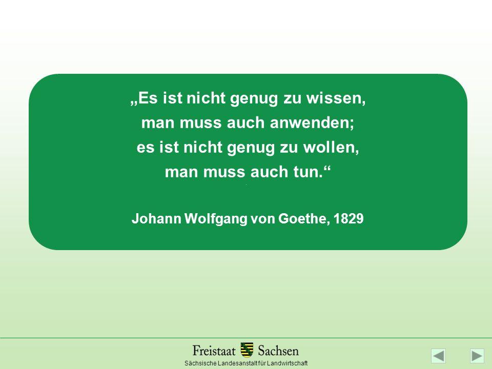 """""""Es ist nicht genug zu wissen, man muss auch anwenden; es ist nicht genug zu wollen, man muss auch tun. Johann Wolfgang von Goethe, 1829"""
