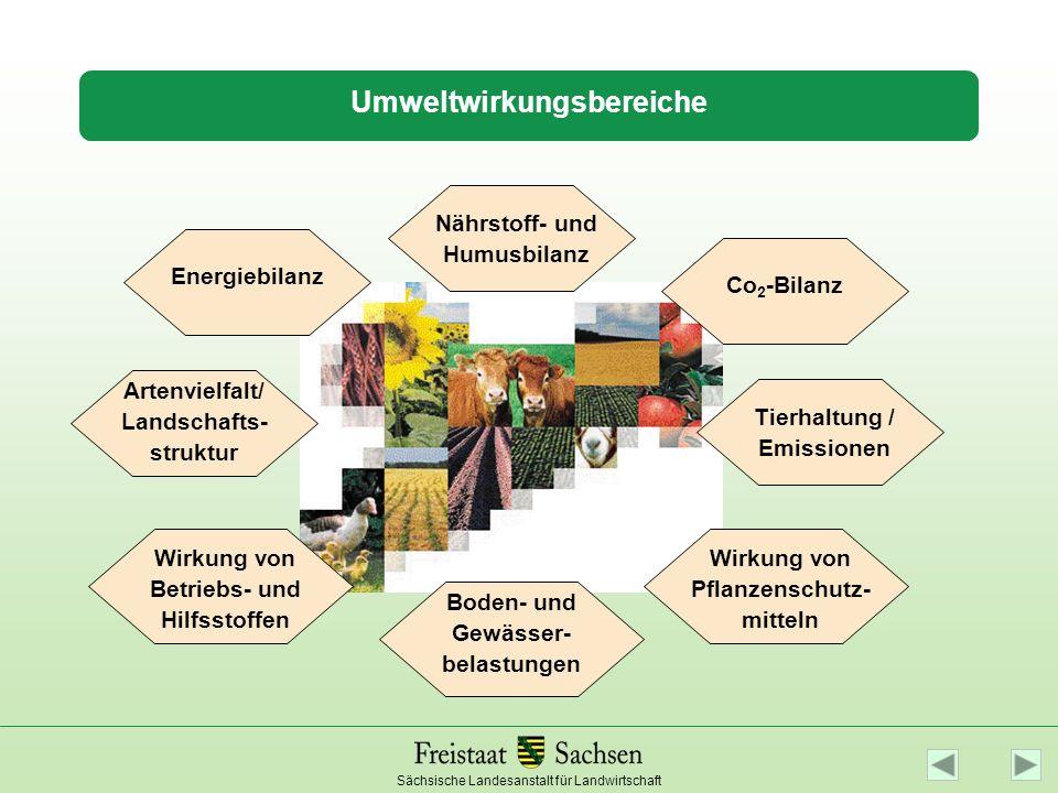 Umweltwirkungsbereiche