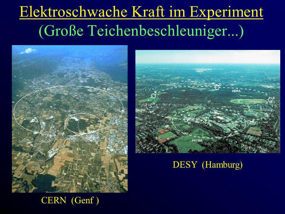 Elektroschwache Kraft im Experiment (Große Teichenbeschleuniger...)