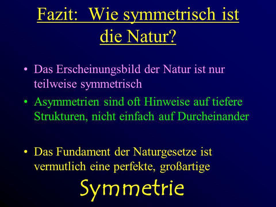 Fazit: Wie symmetrisch ist die Natur