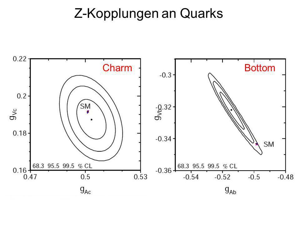 Z-Kopplungen an Quarks