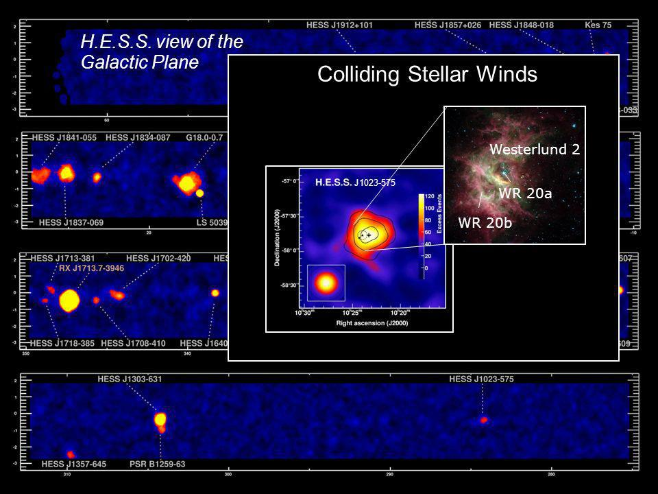 Colliding Stellar Winds