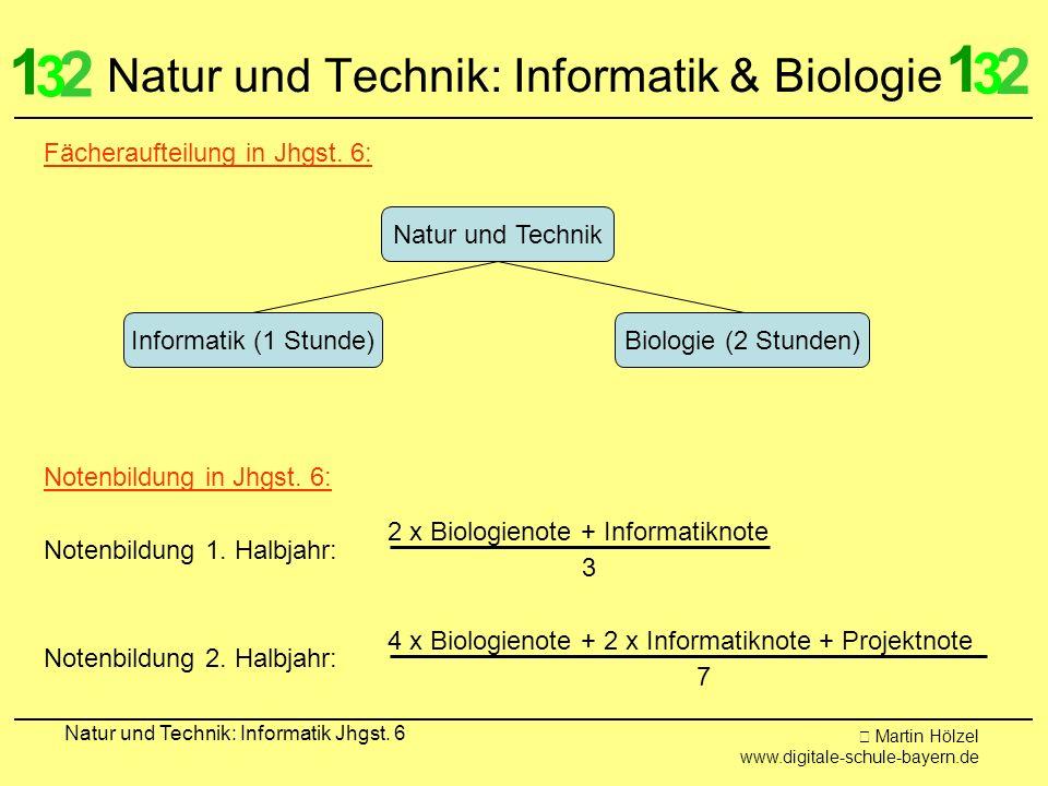Natur und Technik: Informatik & Biologie