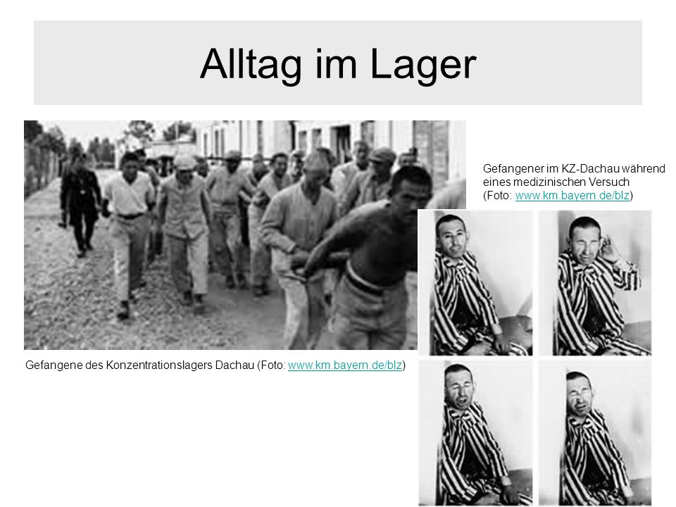 Alltag im LagerGefangener im KZ-Dachau während eines medizinischen Versuch (Foto: www.km.bayern.de/blz)