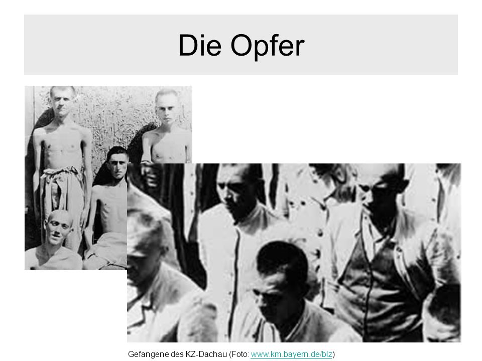 Gefangene des KZ-Dachau (Foto: www.km.bayern.de/blz)