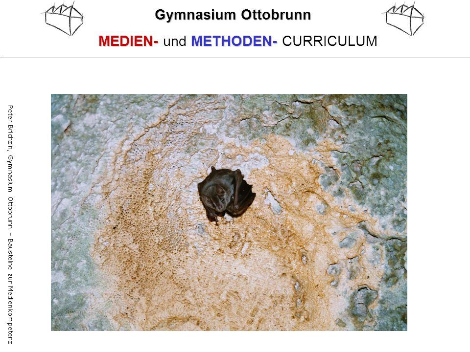 MEDIEN- und METHODEN- CURRICULUM