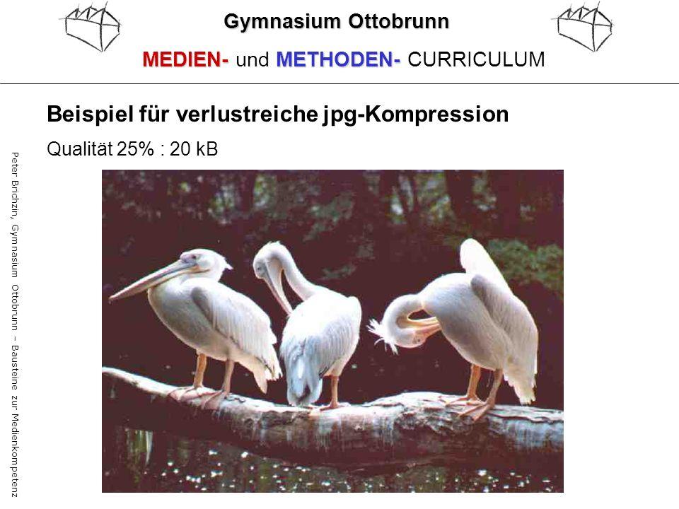 Beispiel für verlustreiche jpg-Kompression