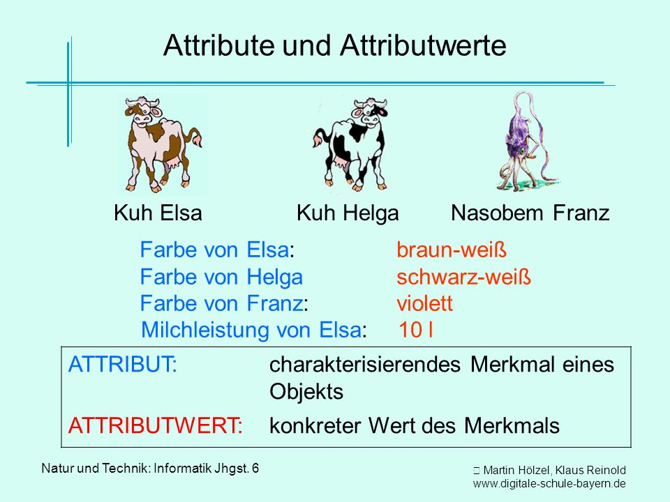 Attribute und Attributwerte