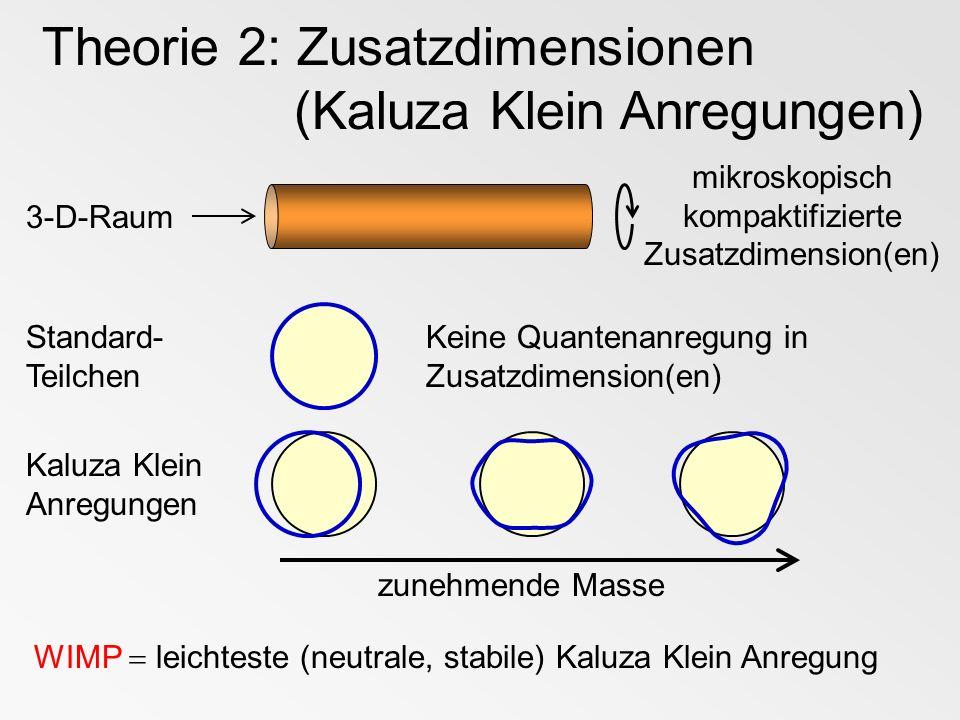 mikroskopisch kompaktifizierte Zusatzdimension(en)