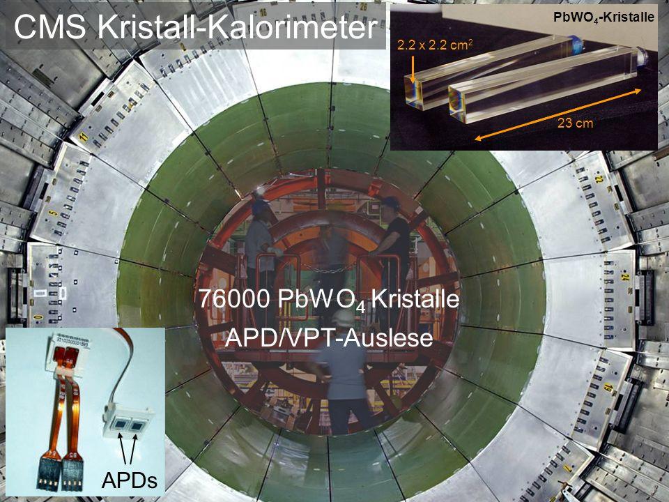 CMS Kristall-Kalorimeter