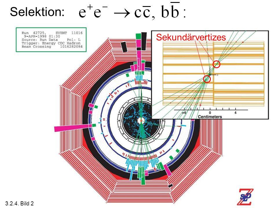 Selektion: Sekundärvertizes 3.2.4. Bild 2
