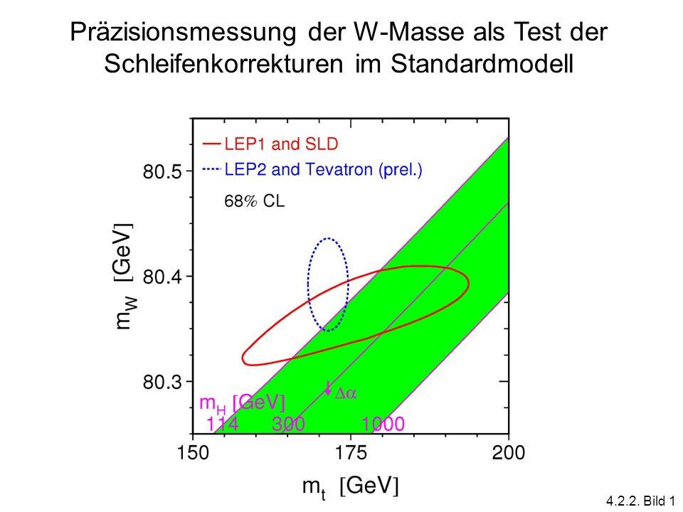 Präzisionsmessung der W-Masse als Test der Schleifenkorrekturen im Standardmodell