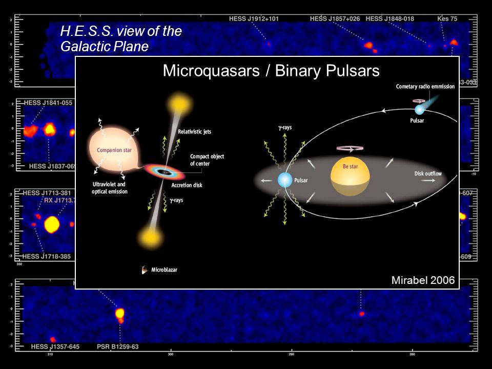 Microquasars / Binary Pulsars