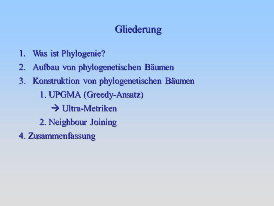 Gliederung 1. Was ist Phylogenie