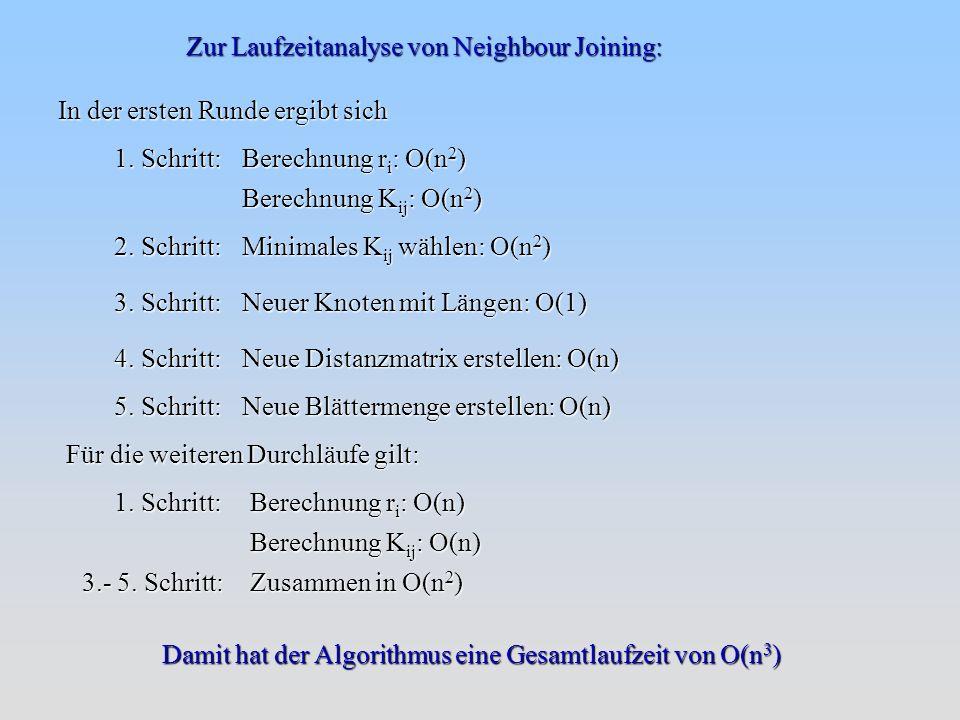 Zur Laufzeitanalyse von Neighbour Joining: